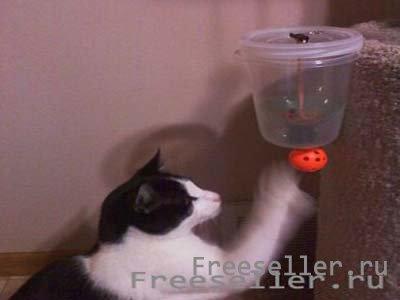 Как сделать кошку из бутылки своими руками 70