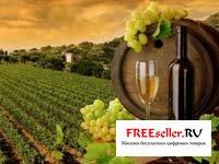 Домашний мини вино-завод