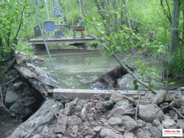 Гидроэлектростанция на ручье своими руками 586