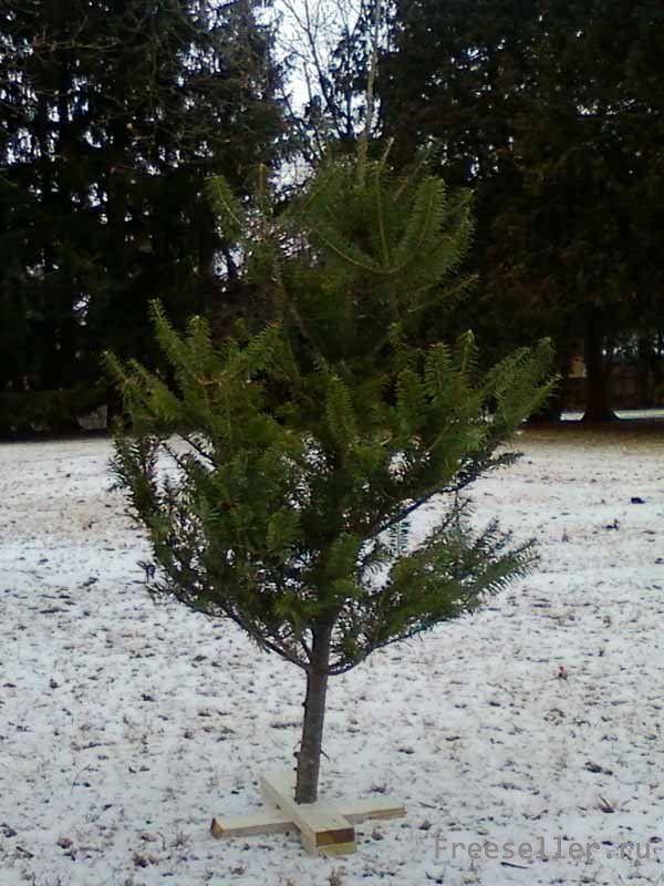 Крестовина для елки своими руками из дерева