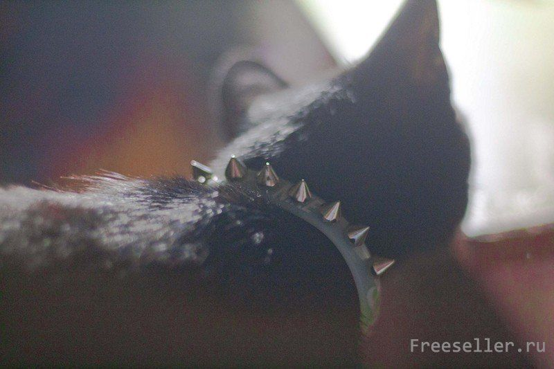 Ошейник для кошек своими руками