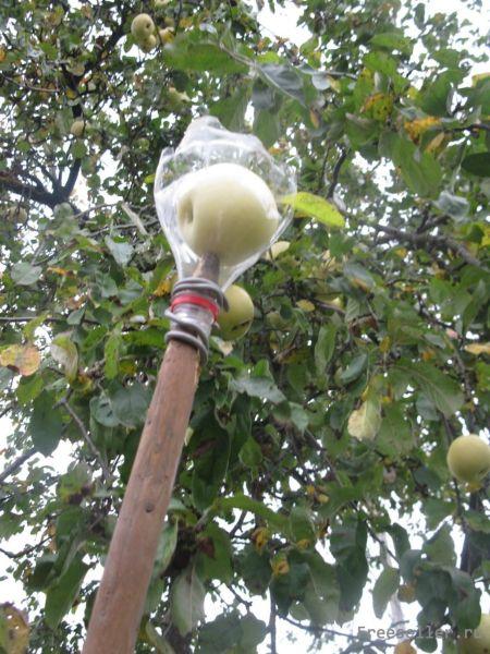 Для снятия яблок своими руками 790