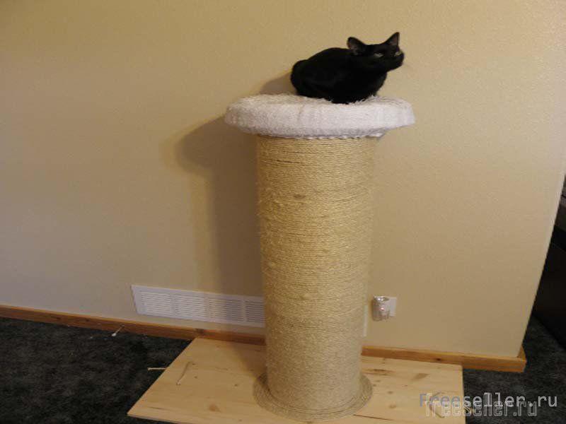Как сделать когтеточку для кошки своими руками