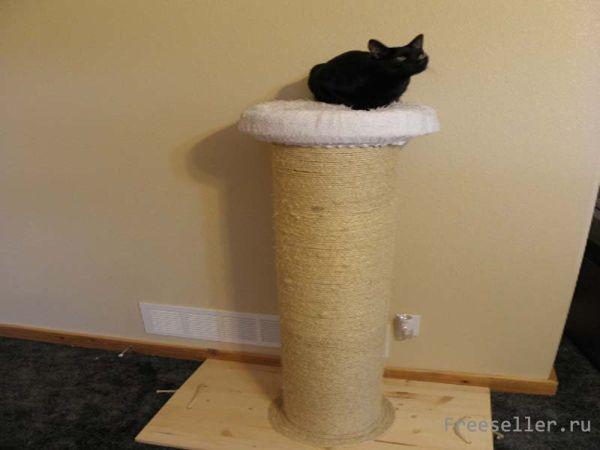 Кроватка для кота своим руками фото 368