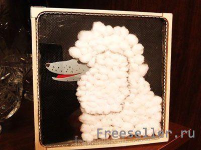 Пудель в пластиковом чехле от диска CD