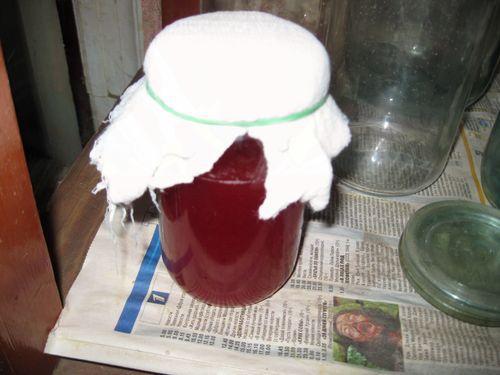Как приготовить винную закваску в домашних условиях