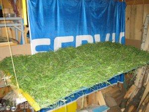 Простое приспособление для сушки сена под навесом